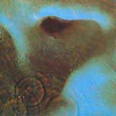 Pink Floyd / MEDDLE(계몽사) / gatefold